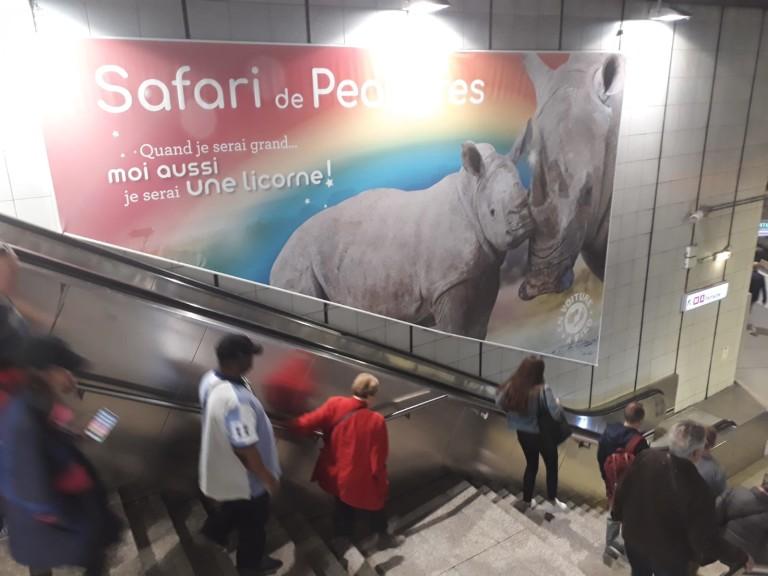 Affichage métro campagne Safari de Peaugres