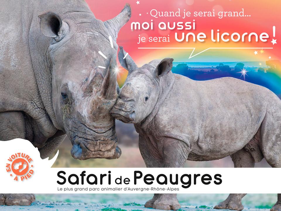 Affiche campagne 2019 Safari de Peaugres
